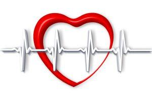 Dr. Wolfram Schwarz: EKG